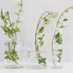 Vază de sticlă