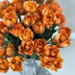 Abonament flori de sezon – o luna